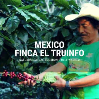Mexico Finca El Trunifo El Jaguar