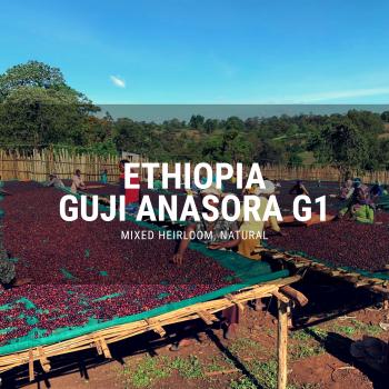 ethiopia guji anasora g1 natural