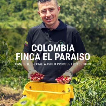 Colombia Finca el paraiso frutos rojo